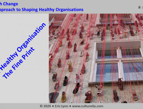 Shaping a Healthy Organisation – The Fine Print