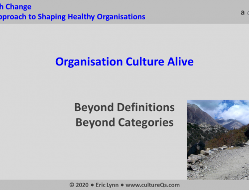 Organisation Culture Alive