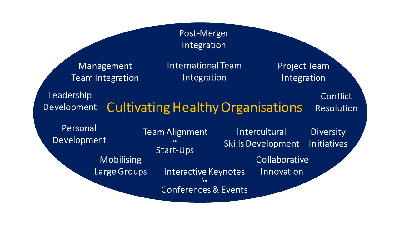 A selection of situations in which cultureQs adds value to your initiative …