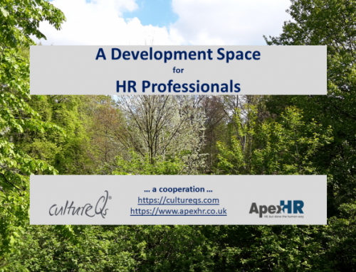 A Development Space for HR Professionals